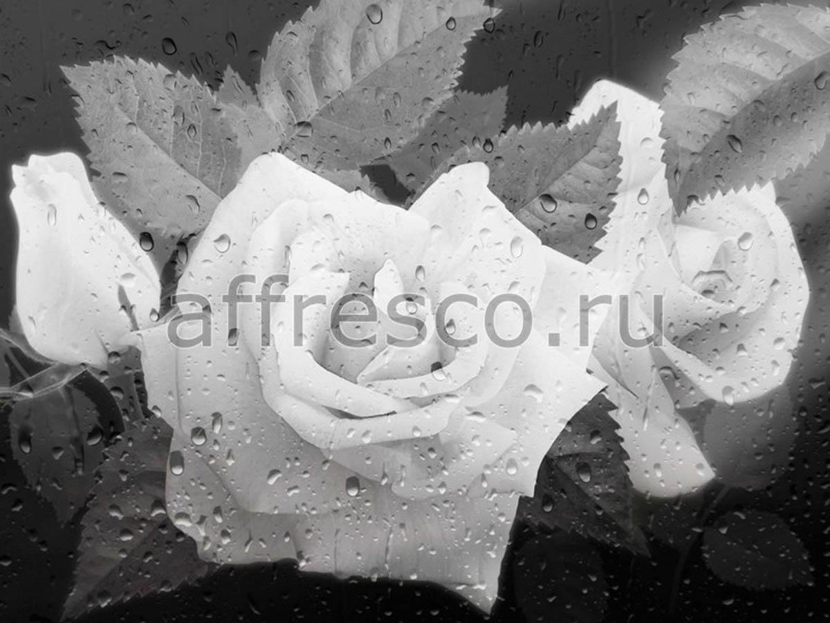 Фреска Affresco 7139