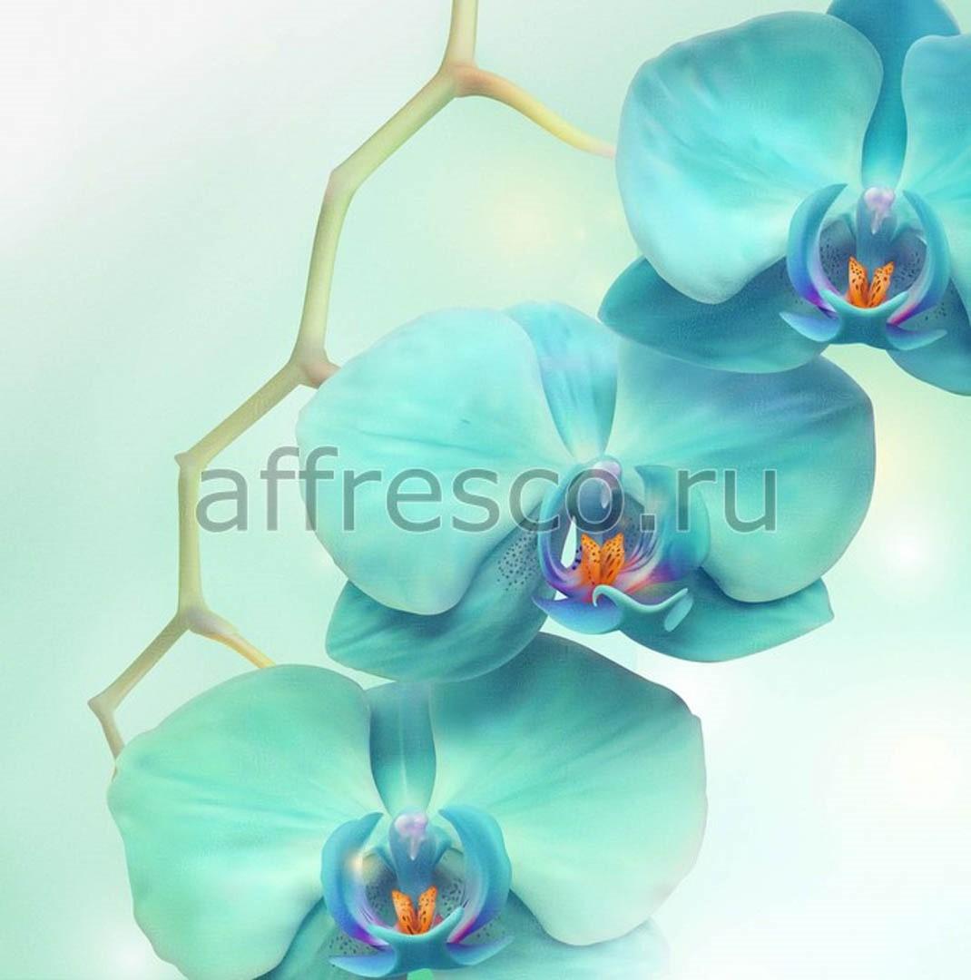 Фреска Affresco 7178