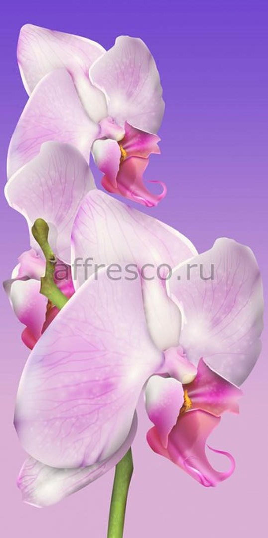 Фреска Affresco 7188