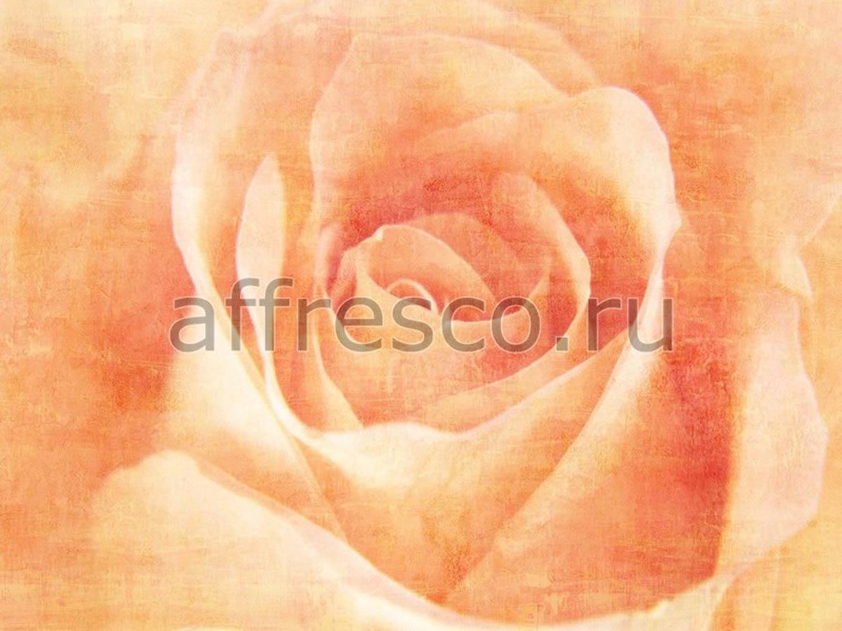 Фреска Affresco A 0011