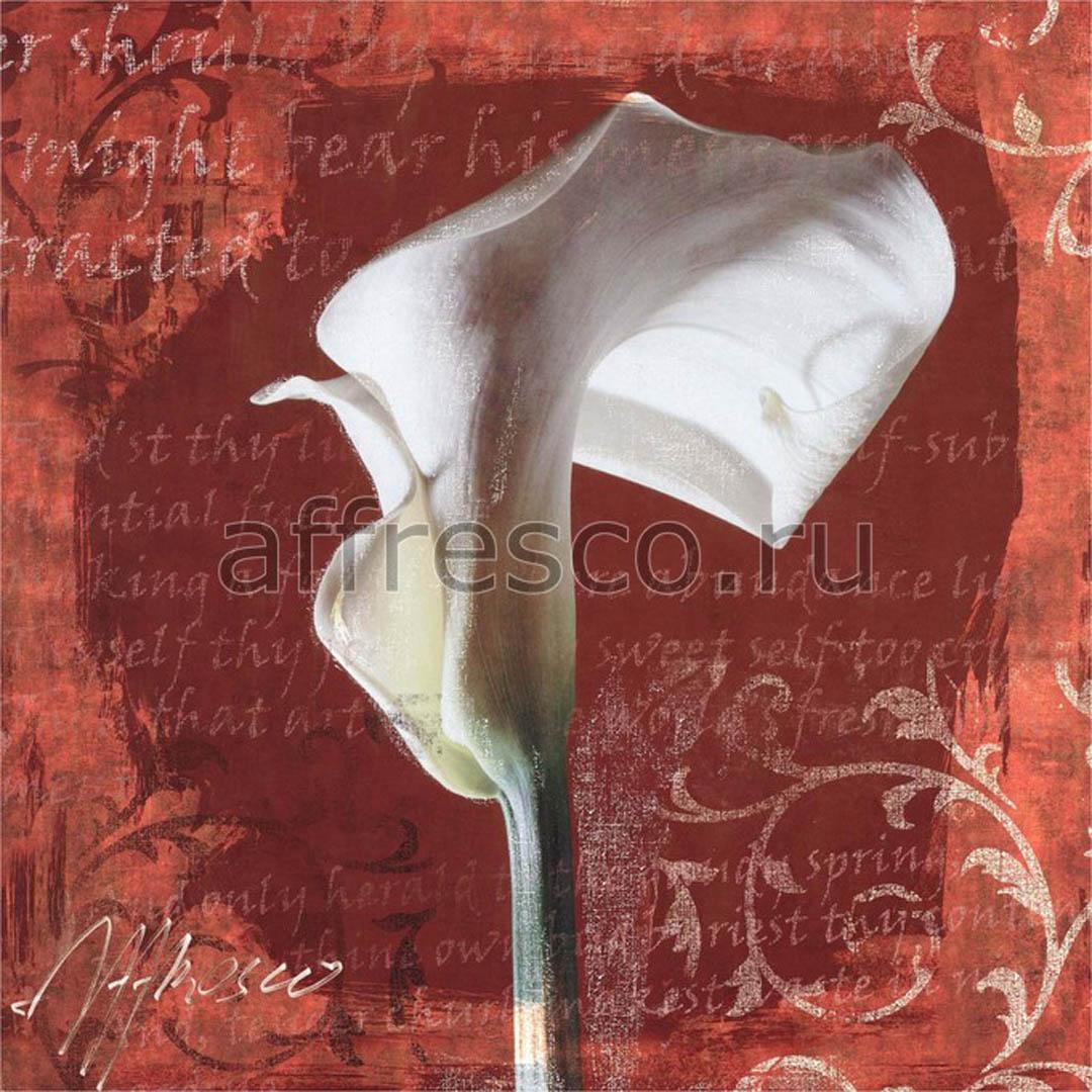 Фреска Affresco A 0066