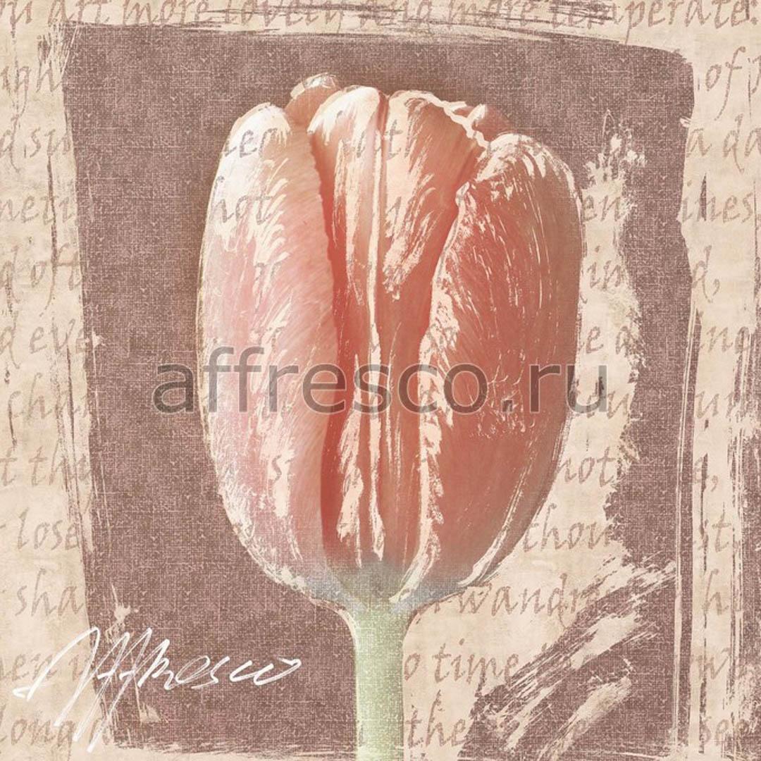 Фреска Affresco A 0069