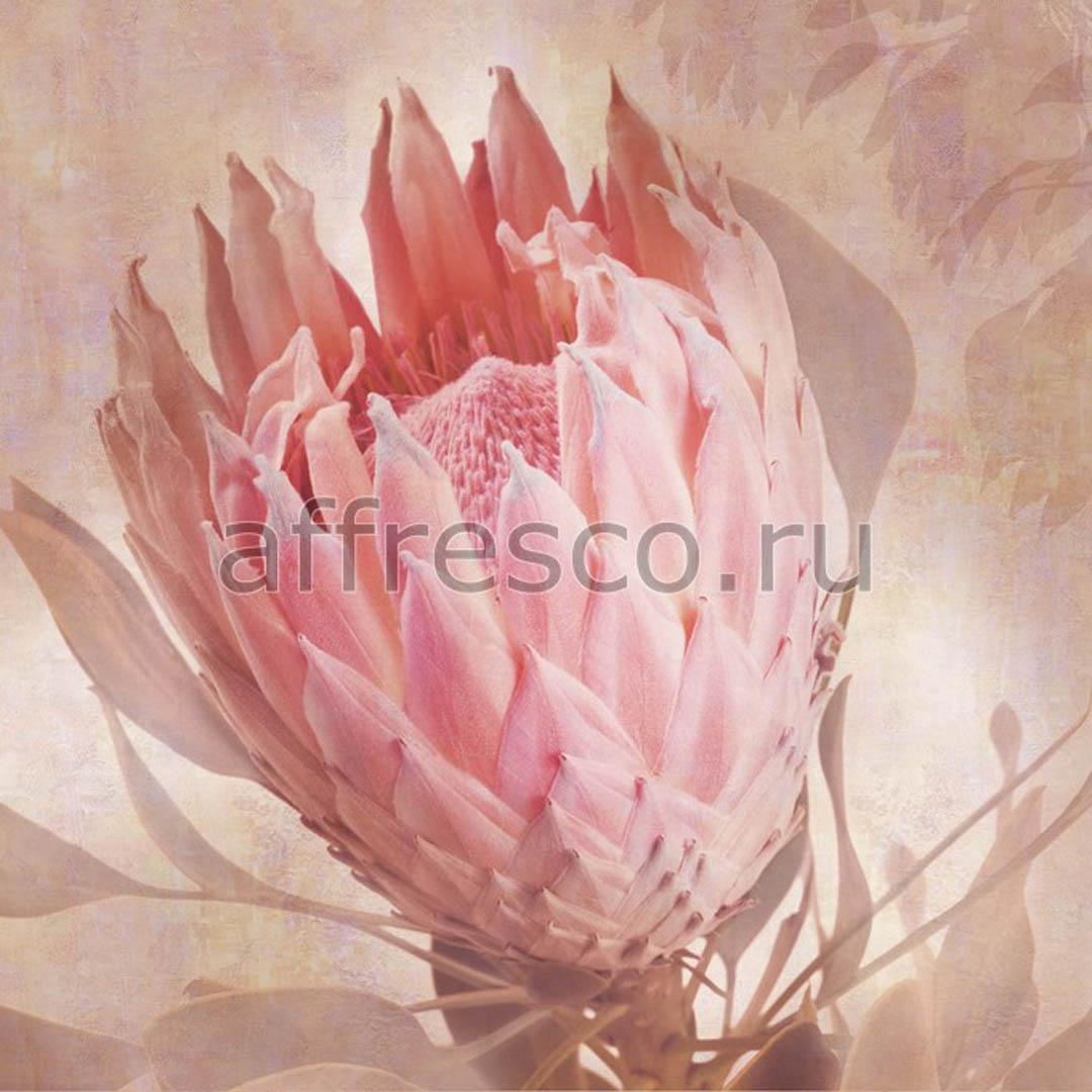 Фреска Affresco A 0084