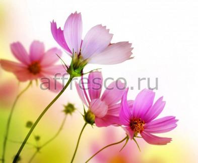 Фреска Affresco 7209