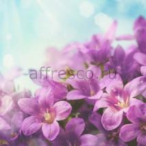 Фреска Affresco 7218