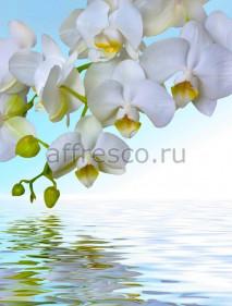 Фреска Affresco 7225