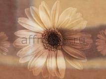 Фреска Affresco A 0003