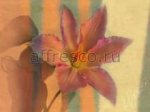 Фреска Affresco A 0007