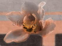 Фреска Affresco A 0009