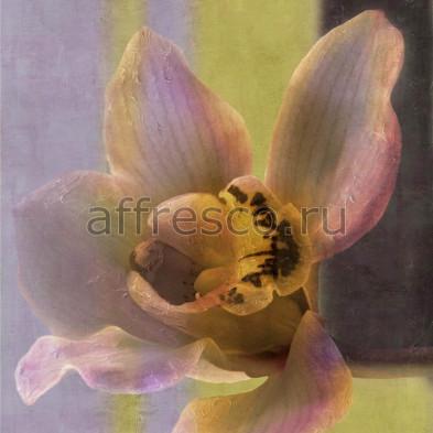 Фреска Affresco A 0017