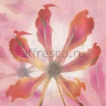 Фреска Affresco A 0023