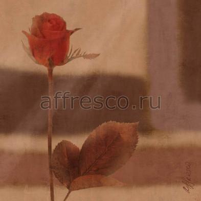 Фреска Affresco A 0024