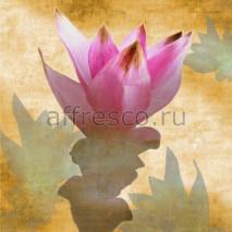 Фреска Affresco A 0037