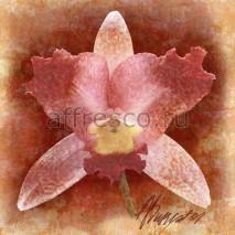 Фреска Affresco A 0061