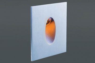 Светильник встраиваемый в стену Donolux DL18373/11WW